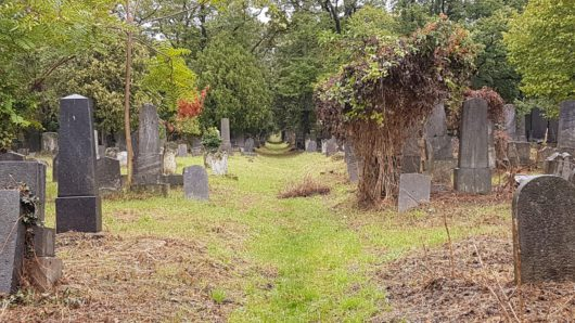 Starý židovský hřbitov<